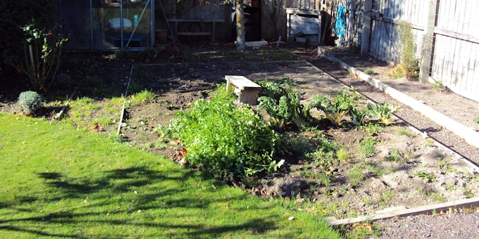 Image gallery jim burrows landscaping christchurch for Gardening services christchurch