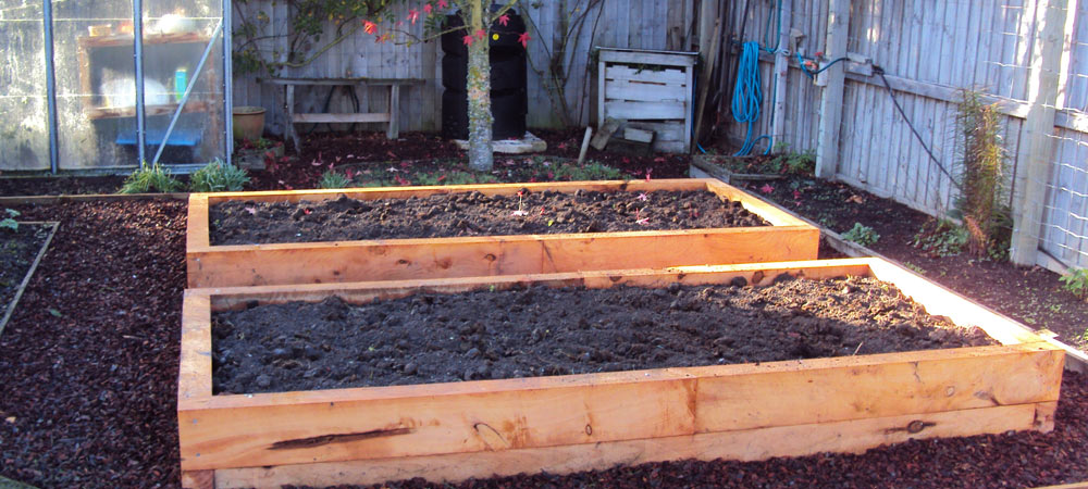 raised garden beds with macrocarpa